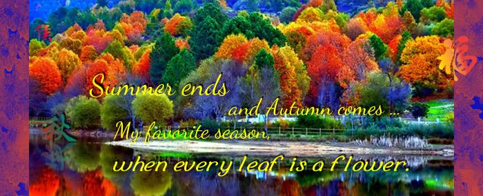 09-29-18 Autumn