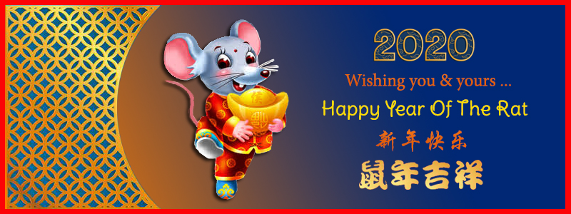 2020 Chinese New Year banner